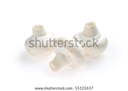 Three white mushrooms on a white background