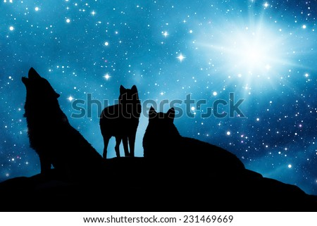 three wolves at night with starry sky - stock photo