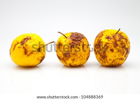 three yellow apples in a bad state - stock photo