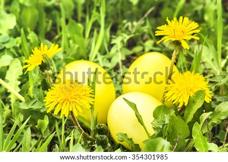 Three yellow Easter eggs in green grass with dandelions on a sunny spring day, close up. Selective focus - stock photo