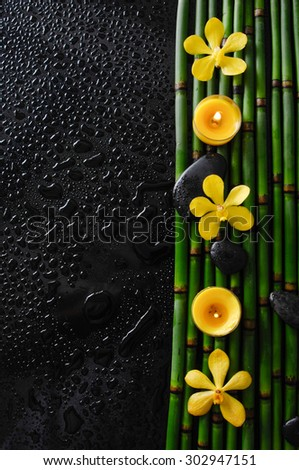 three yellow orchid with black stones and bamboo grove on wet black background  - stock photo