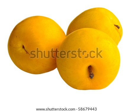 Three yellow plums isolated on white.