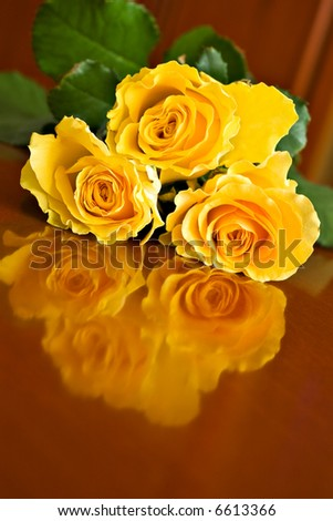 three yellow roses on brown table - stock photo