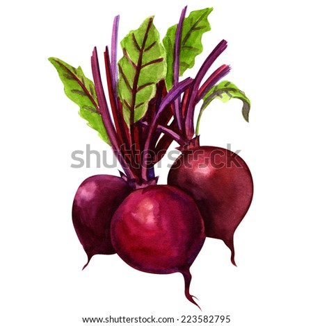 three young beets isolated - stock photo