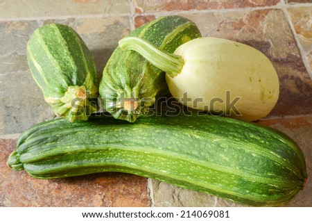 Three zucchini and a winter squash on a slate tile floor - stock photo