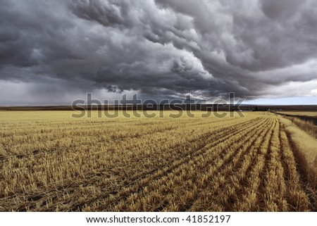 Thunder-storm above Montana. Fields after a harvest