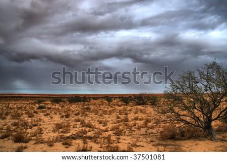 thunderstorm near Birdsville, Queensland (Auistralia) - stock photo