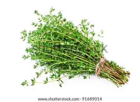 Thyme - stock photo