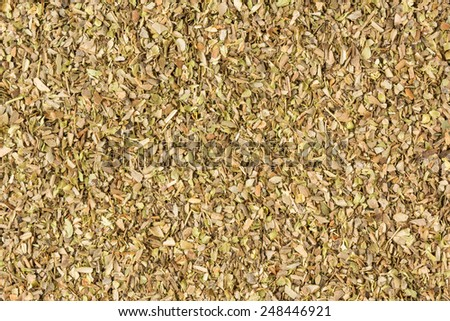 Thyme Background. Studio Shot. - stock photo