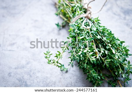 Thyme bunch - stock photo