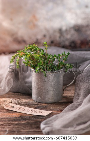 Thyme. Bunch of fresh green thyme in the vintage rustic mug on the wooden table. Fragrant herbs. Aromatherapy. Invigorating tea collection. The harvest of medicinal herbs.