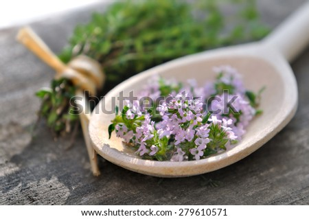 thyme flowers in a wooden spoon with bouquet - stock photo