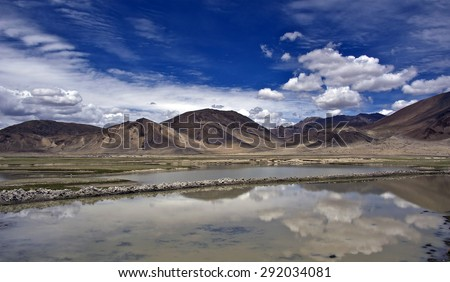 Tibetan Himalayas. Alpine pastures of the Himalayas - scarce, rare plants survive on stone pastures, mountain passes. - stock photo