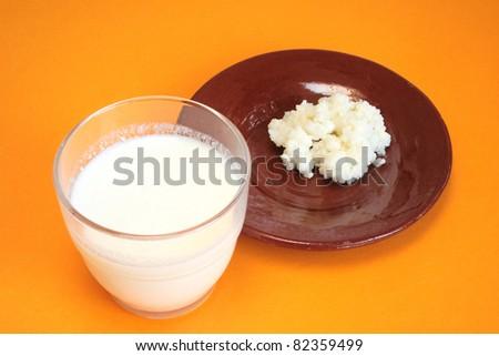 Tibetan milk mushroom and glass of kefir - stock photo
