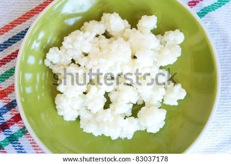 Tibetan milk mushroom on green plate - stock photo