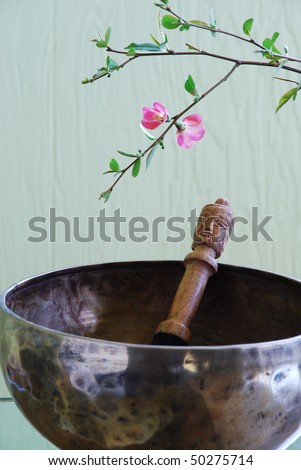 Tibetan singing bowl with mallet and flowering tree branch - stock photo