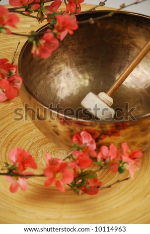 Tibetan singing bowl with mallet and japanese cherry flowers - stock photo