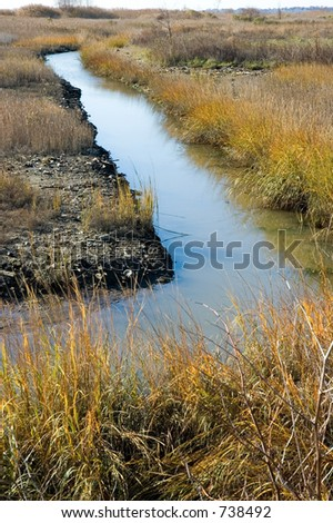 Tidal marshland in the late fall, with autumn colors.