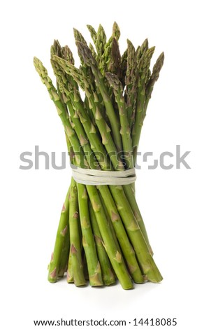 Tied bundle of asparagus isolated on white background