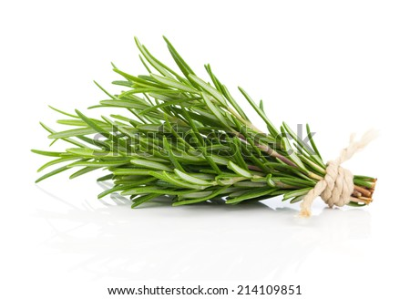 tied fresh rosemary on a white background - stock photo