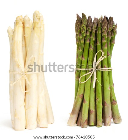 tied white and green asparagus on white background - stock photo
