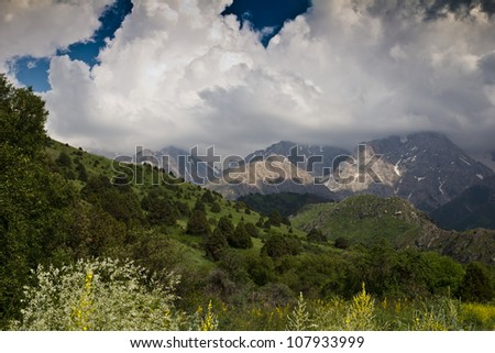 Tien Shan Mountains in the nature
