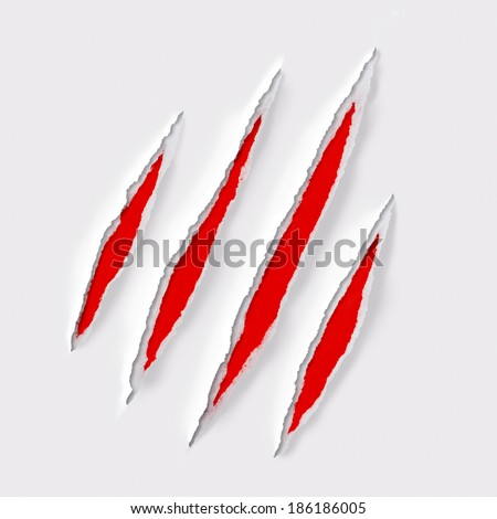 tiger claw scratches on solid gray background - stock photo