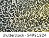 tiger fabric 3 - stock photo