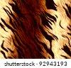 tiger fur texture - stock photo