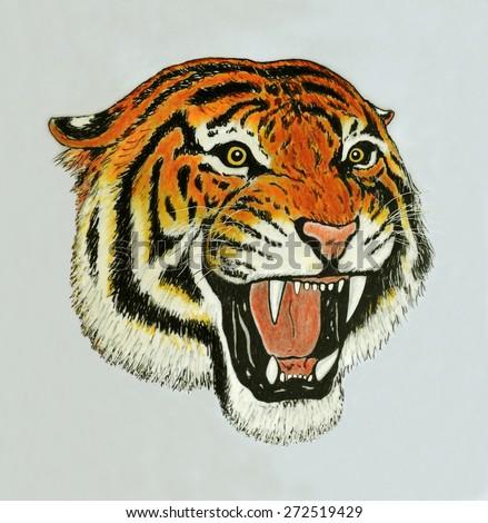tiger roar drawing - stock photo