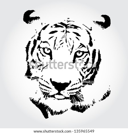 Tiger sketch isolated background. - stock photo