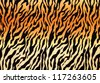 tiger skin pattern - stock photo