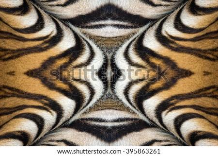 tiger skin texture. - stock photo
