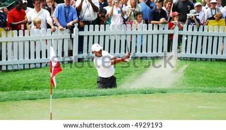 Tiger Woods - stock photo