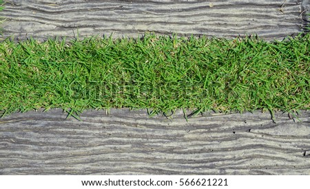 Tile And Grass In Garden