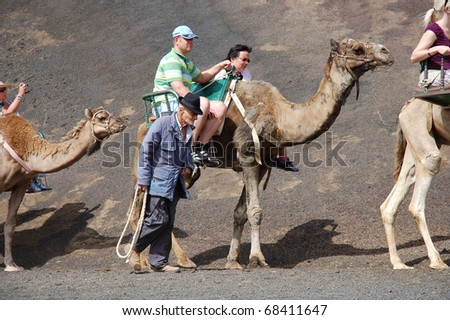 TIMANFAYA NATIONAL PARK, LANZAROTE, SPAIN - JUNE 10: Tourists riding on camels being guided by local people through the famous Timanfaya National Park in June 10, 2009 in Lanzarote, Spain - stock photo