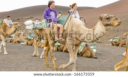 TIMANFAYA - NOV 13 : Unidentified tourists  taking a camel ride on November 13, 2013 in Timanfaya National Park, Lanzarote island, Spain. The parkland is entirely made up of volcanic soil. - stock photo