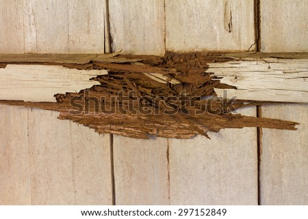 Timber beams within the wooden walls from damage by rot, termites which eat for a long time. - stock photo