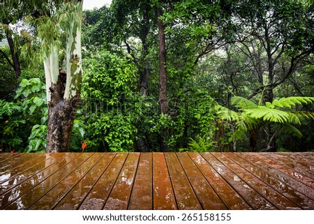 Timber boards stretch out in perspective to the lush green jungle behind - stock photo