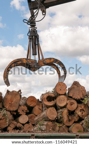 Timber for transportation (loading a truck) - stock photo