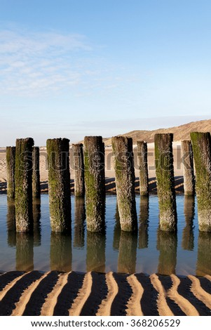 timber groyne with reflexion in water