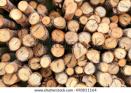 Timber Harvesting Log Wood Firewood Timber Stock Photo Royalty Free