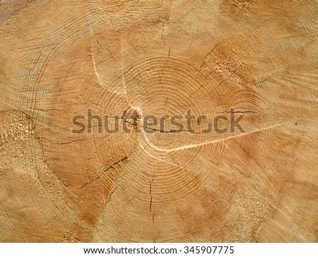 Timber industry natural abstract background: rough surface of brown sawed wood log end with growth rings, cracks, splits and scratchs closeup - stock photo