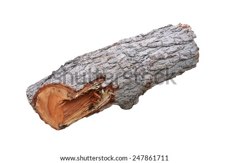 timber isolated on the white background - stock photo