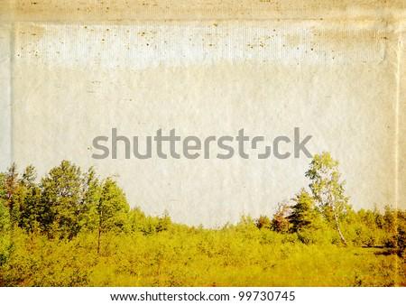 timber landscape on grunge background - stock photo
