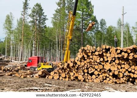 timber loading - stock photo