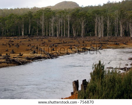 timber logging along a river in Tasmania, Australia. - stock photo