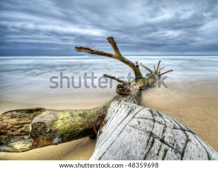 Timber on the beach with incoming storm - Dominican Republic - stock photo