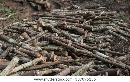 Timber rubber wood