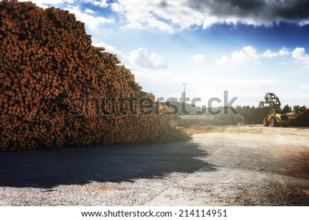 Timber stacked at lumber mill - stock photo
